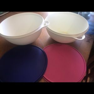 Tupperware 32 qt pink/blue lid That'sa  bowl